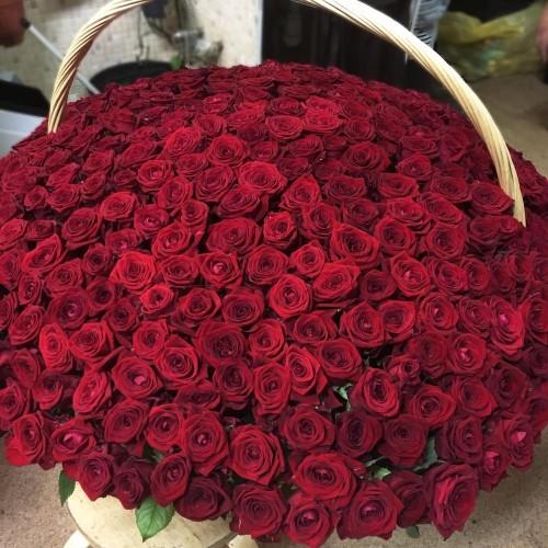 Купить на заказ 1001 роза с доставкой в Шардаре