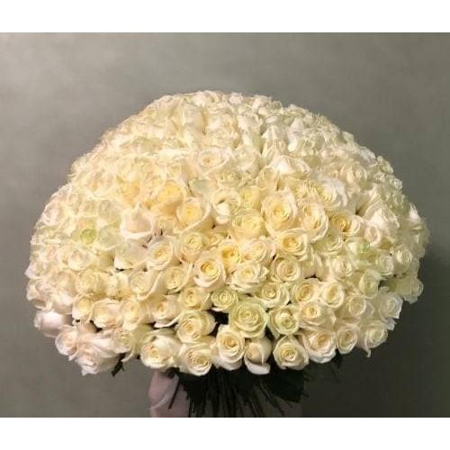 Купить на заказ 201 роза с доставкой в Шардаре